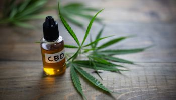 What Your Financial Institution Needs to Know About Banking CBD Retailers