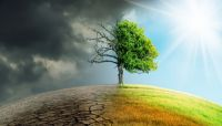 How the Banking Sector is Managing Climate Change Risk