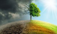 Carney: Public sector must step up climate change efforts
