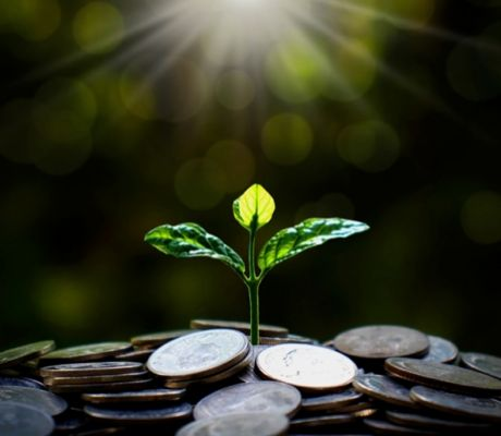 Sustainable Fund Outperformance Questioned