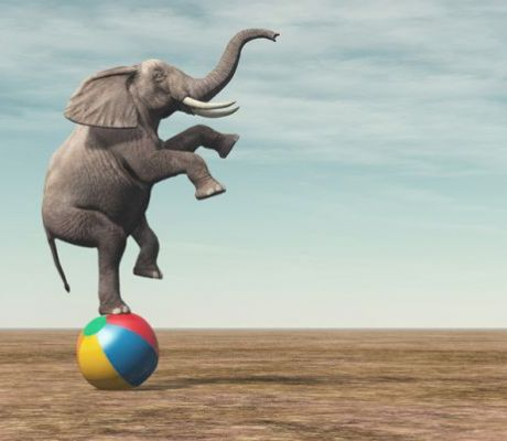 OPINION: In Banking, Can the Old Elephants Dance?